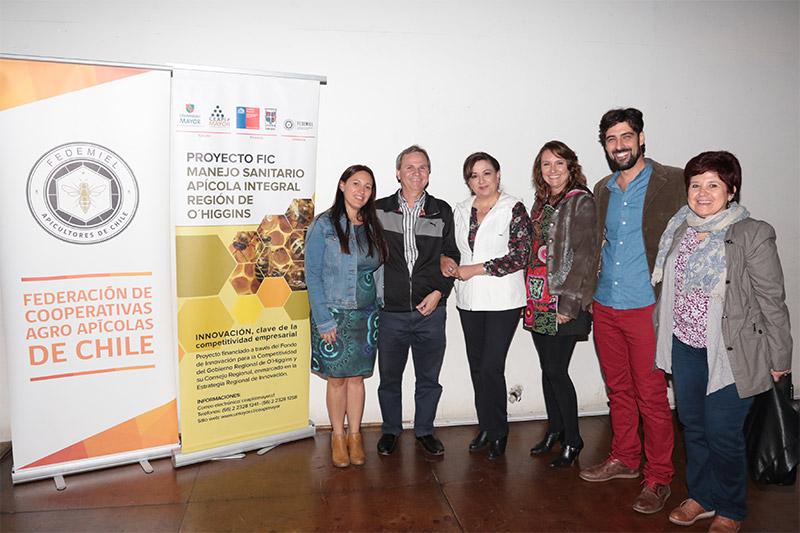 Solatina proyecto fic rancagüino universidad mayor