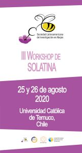 lll workshop solatina 2020 temuco chile filapi
