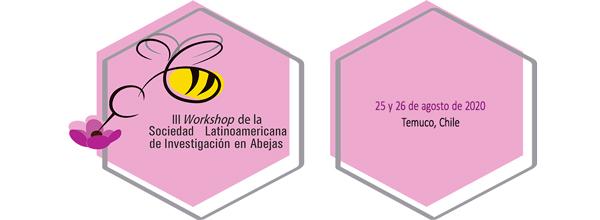 workshop invitación solatina 2020