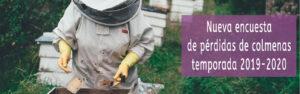 perdidas de colmenas solatina meliponas abejas melíferas