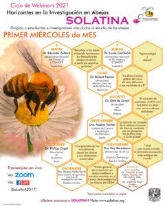 abejas solatina apicultura miel