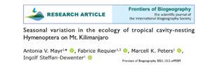 mayr 2021 hymenoptera seasonal variation solatina papers abejas