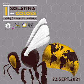 coloss solatina 2021 virtual abejas sociedad científica apicultura afiche